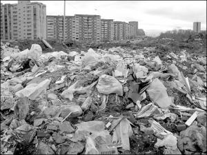"""фирма ООО """"МСК"""", как вывезти мусор на свалку"""